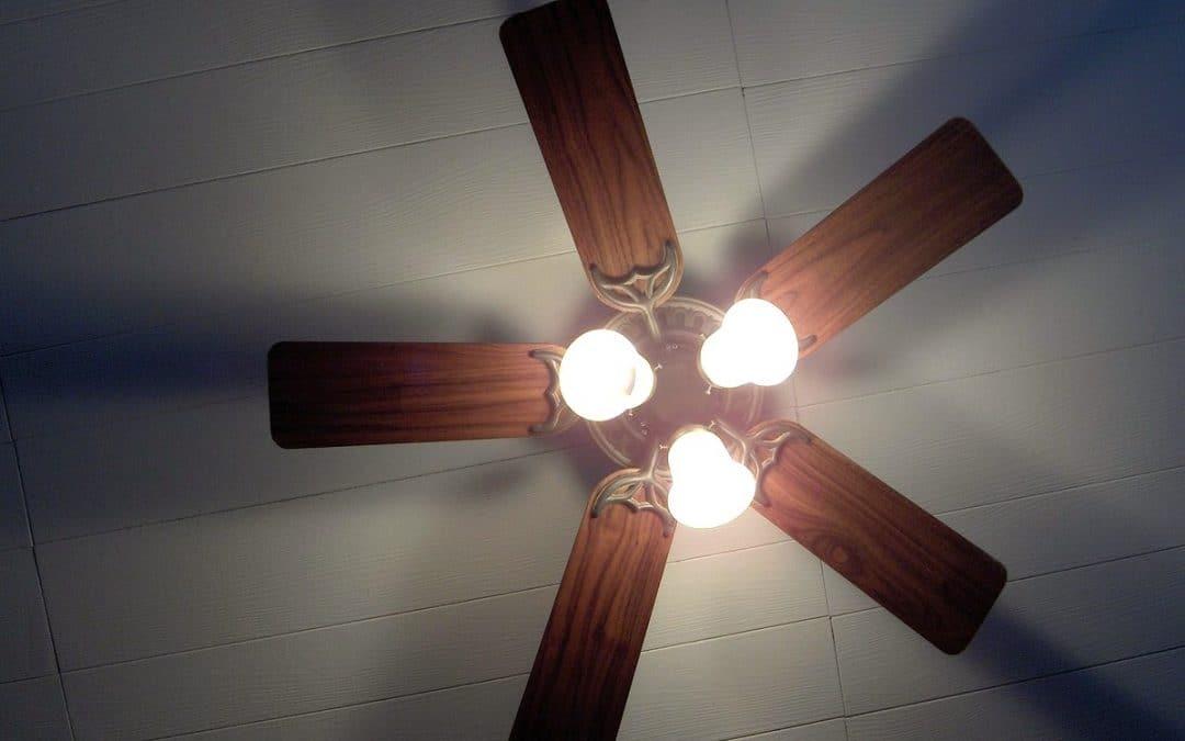 Ceiling Fan and Exhaust Fan Installation